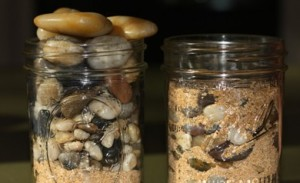 rocks-in-a-jar-portfolio-390x238